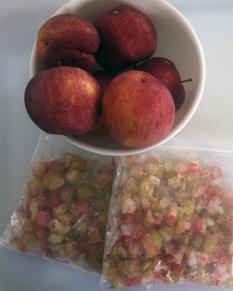 apples and rhubarb.jpg